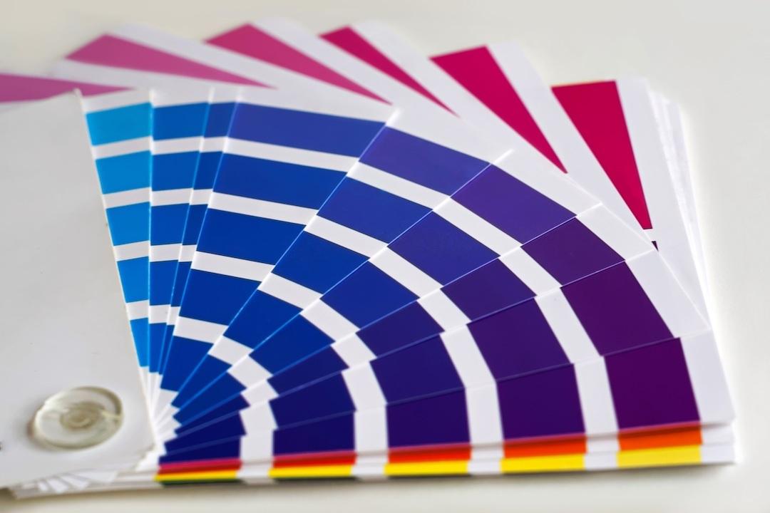 colour-pallette.jpeg#asset:472